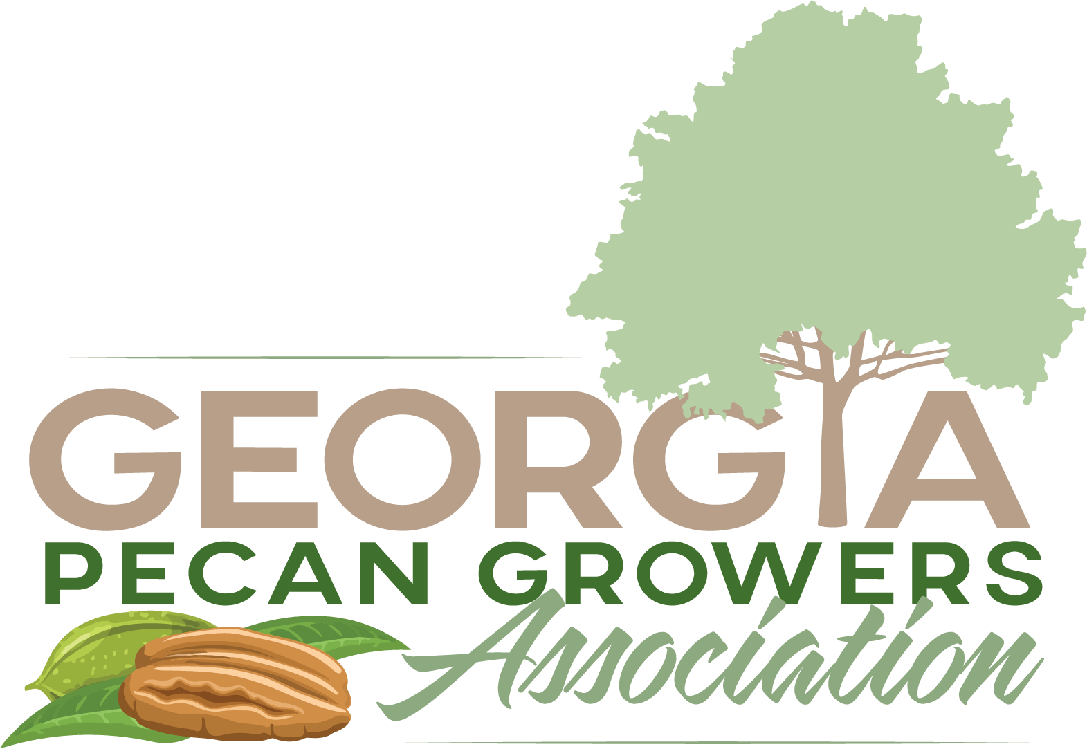 Pecans Georgia Pecan Growers Ociation Nature S Health